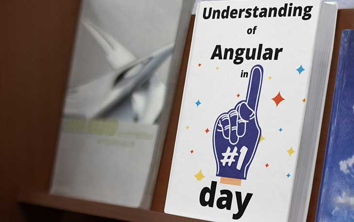 Understanding of Angular in 1 Day